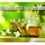 20 mamfaat teh bagi kesehatan dan efek sampingnya