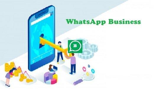 WhatsApp Bisnis Indonesia