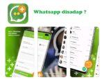 Whatsapp disadap, Bagaimana mengatasinya